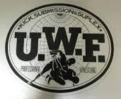 「UWF」とは何だったのか?~④新生UWF旗揚げ~崩壊